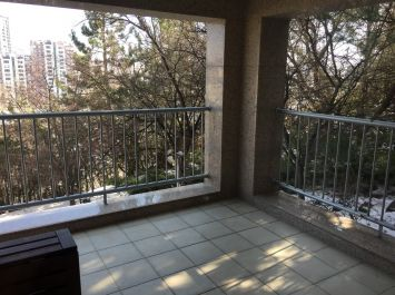 Furnished Apartment At High Rise Compound